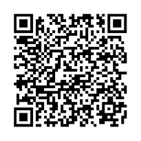 QR link for Two Thoughts with but a Single Mind : Crime and Punishment and the Writing of Fiction